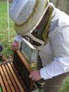 Beekeeper Barbara